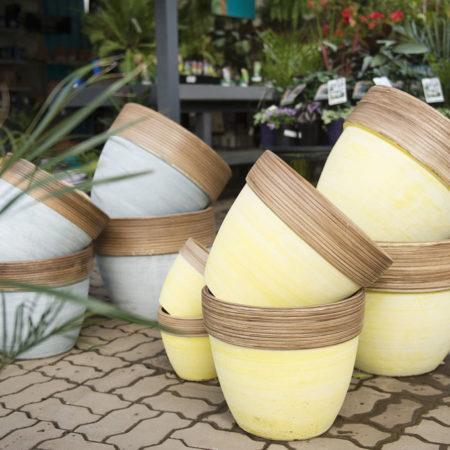 Garden pots, Drysdale